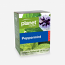 Planet Organic Peppermint Tea
