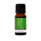 Eco. Aroma Eucalyptus Pure Essential Oil